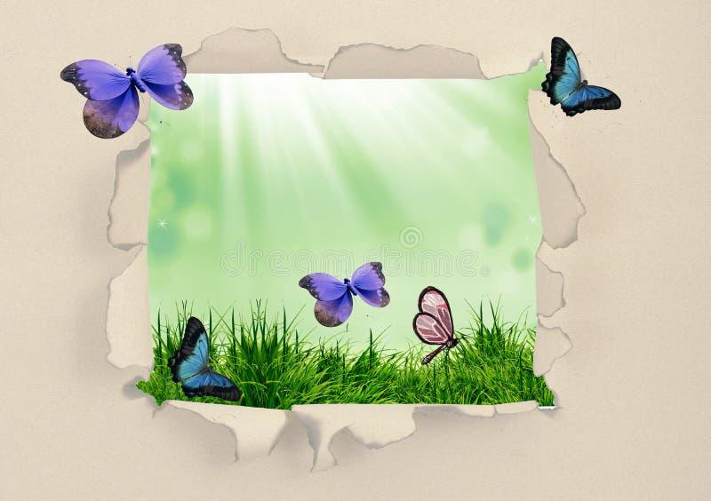 Πράσινη χλόη μέσω του σχισμένου εγγράφου διανυσματική απεικόνιση