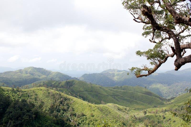 Πράσινη όμορφη άποψη βουνών στοκ εικόνες