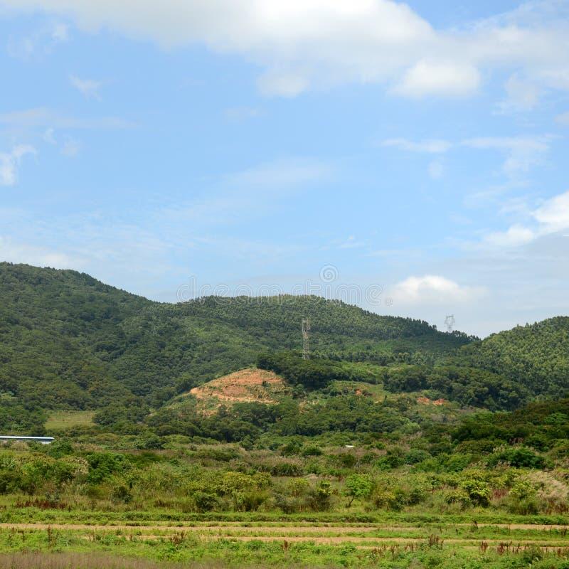 Πράσινοι αγροτικοί τομείς στοκ φωτογραφία με δικαίωμα ελεύθερης χρήσης