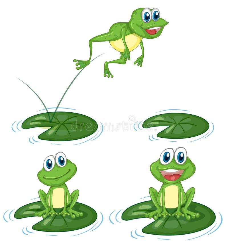Πράσινοι βάτραχοι που πηδούν στα φύλλα κρίνων νερού απεικόνιση αποθεμάτων