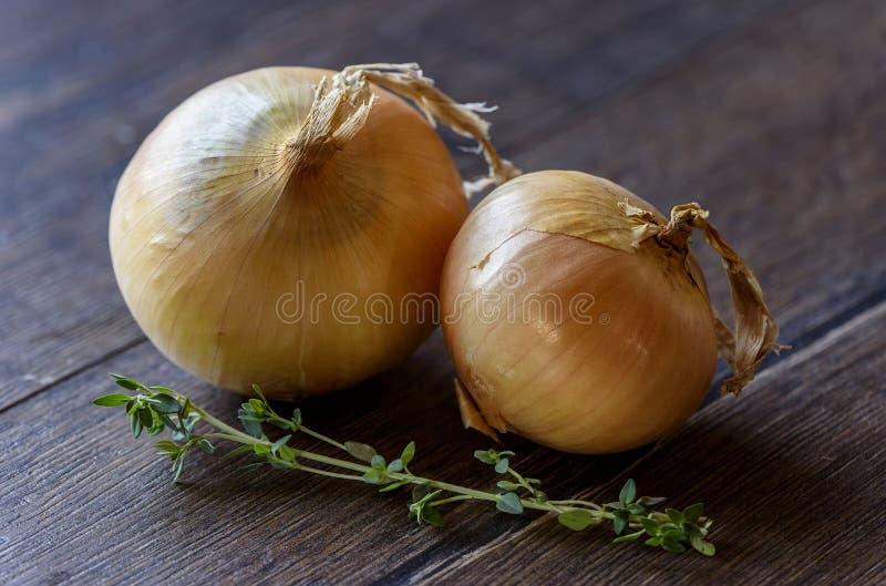 Πράσινοι βασιλικός και κρεμμύδι στο ξύλινο υπόβαθρο στοκ εικόνες