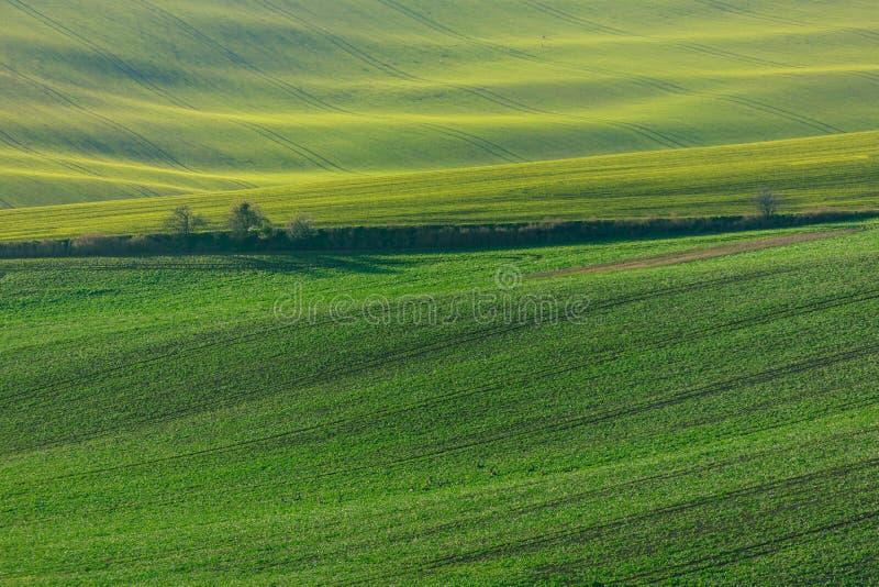 Πράσινοι λόφοι της Μοραβία στοκ φωτογραφίες με δικαίωμα ελεύθερης χρήσης