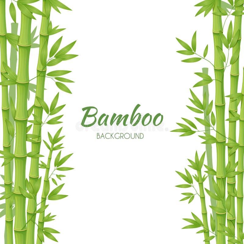 Πράσινοι μίσχοι μπαμπού με τα πράσινα φύλλα σε ένα άσπρο υπόβαθρο διανυσματική απεικόνιση