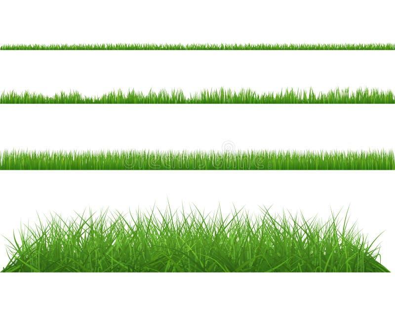 Πράσινοι πυκνός μεγάλος χλόης και μικρός ελεύθερη απεικόνιση δικαιώματος