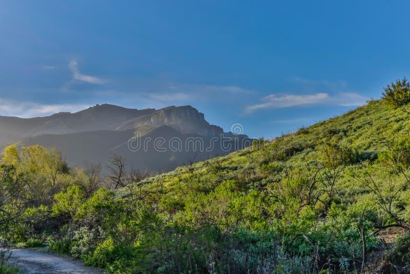 Πράσινοι λόφοι μετά από τη βροχή στοκ φωτογραφίες με δικαίωμα ελεύθερης χρήσης
