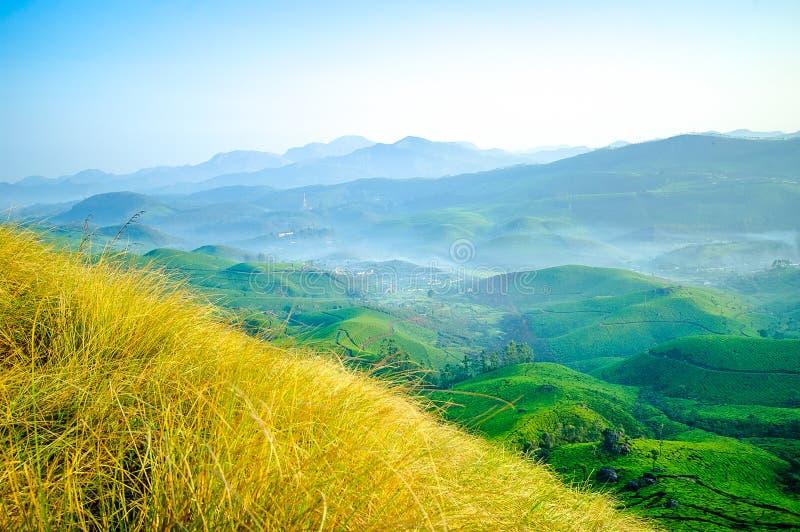Πράσινοι λόφοι της Misty, Munnar στοκ εικόνα
