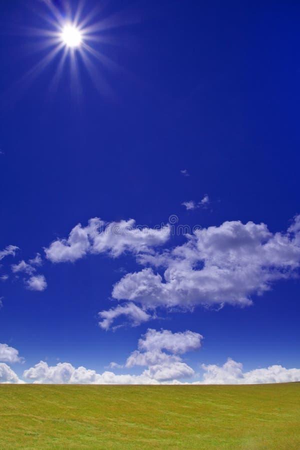 πράσινος ήλιος πεδίων στοκ εικόνα
