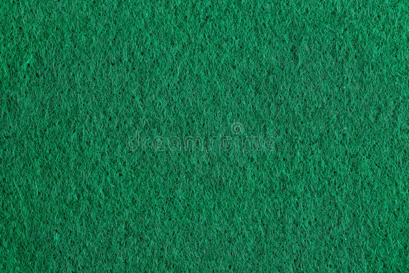 Πράσινος αισθητός στοκ φωτογραφία με δικαίωμα ελεύθερης χρήσης