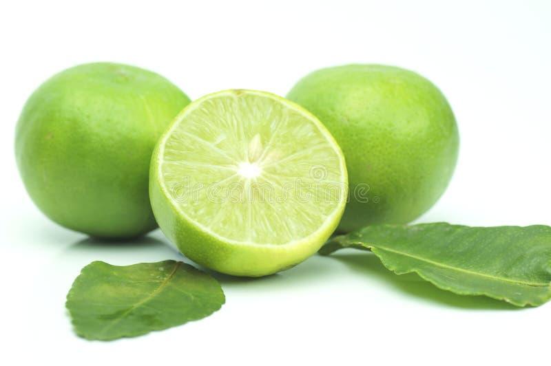 πράσινος ασβέστης τα φύλλα που απομονώνονται με στοκ φωτογραφία με δικαίωμα ελεύθερης χρήσης