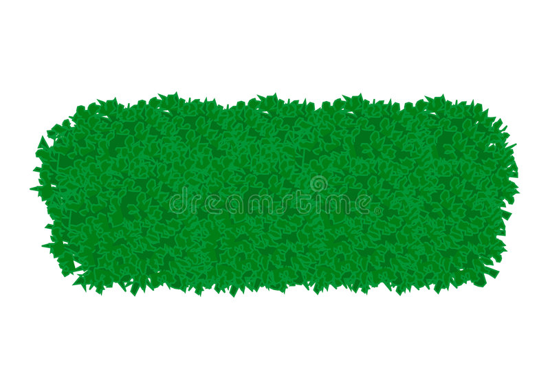 Πράσινος θάμνος διανυσματική απεικόνιση