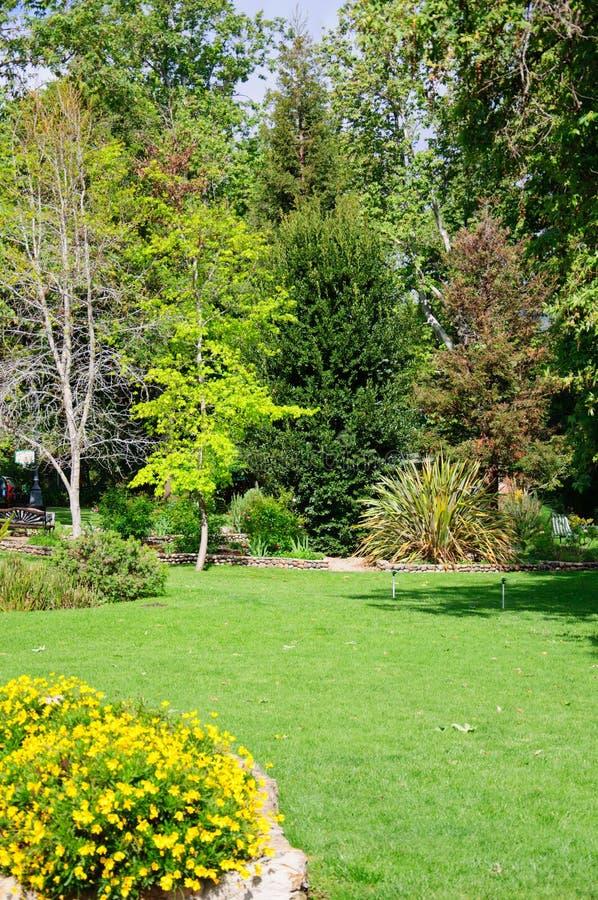 Πράσινος κήπος θερινών κατωφλιών με τη χλόη μετά από τη βροχή και τον ήλιο στοκ εικόνες