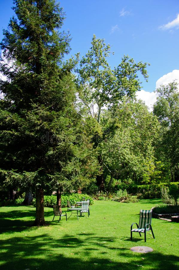 Πράσινος κήπος θερινών κατωφλιών με τη χλόη, τον πίνακα και τις καρέκλες στοκ εικόνες