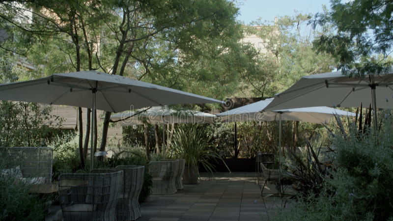 Πράσινος κήπος με τις καρέκλες και την ομπρέλα παραλιών απόθεμα βίντεο