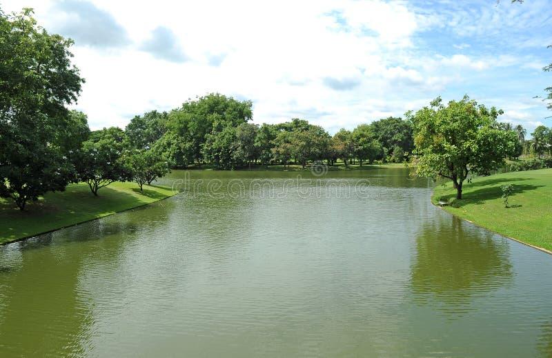 Πράσινος και λίμνη στοκ εικόνα