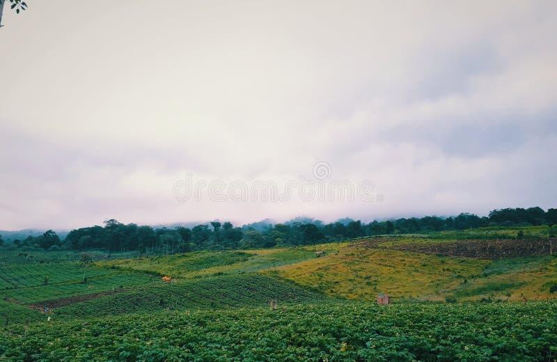 πράσινος λόφος στοκ φωτογραφία