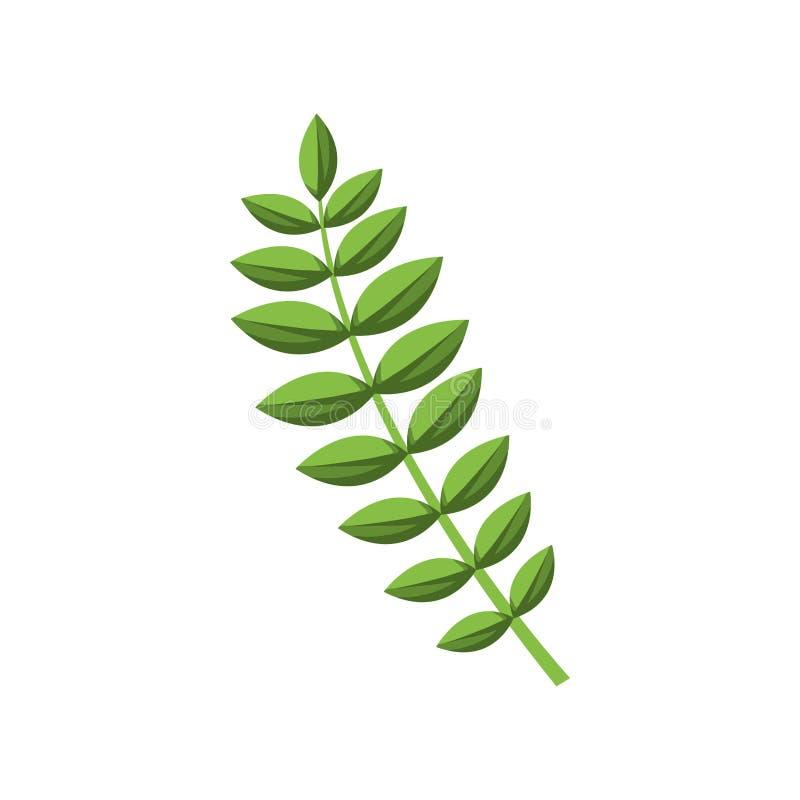 Πράσινος μίσχος με πολλά ωοειδή φύλλα διανυσματική απεικόνιση