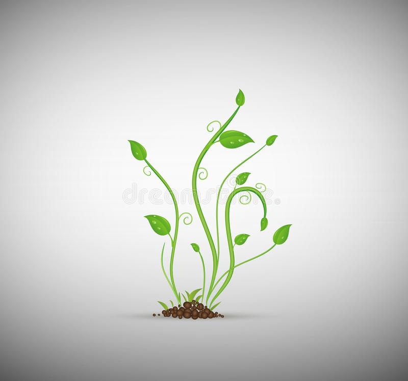Πράσινος νεαρός βλαστός στο χώμα που απομονώνεται, απεικόνιση αποθεμάτων