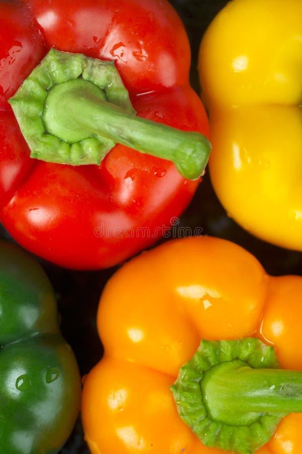 πράσινος πορτοκαλής κόκκινος κίτρινος πιπεριών στοκ φωτογραφία με δικαίωμα ελεύθερης χρήσης