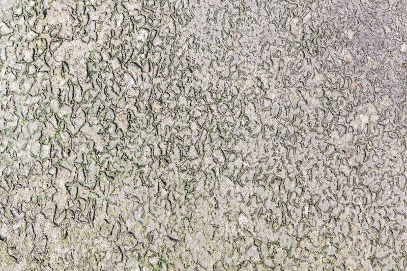 Πράσινος στάξτε τον κυματισμό στη ροή ποταμών στοκ εικόνα με δικαίωμα ελεύθερης χρήσης