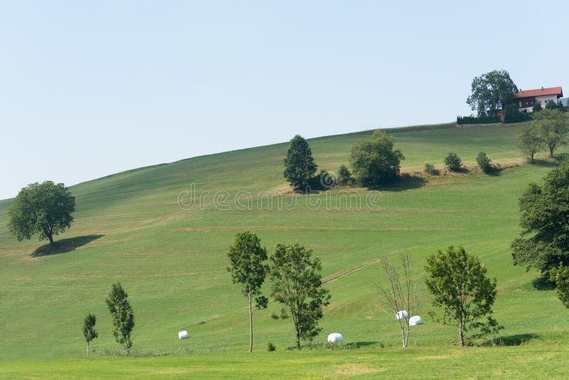 Πράσινος τομέας με το σπίτι στοκ φωτογραφίες με δικαίωμα ελεύθερης χρήσης