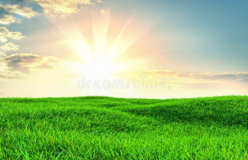Πράσινος τομέας χλόης στους μικρούς λόφους στοκ εικόνες με δικαίωμα ελεύθερης χρήσης