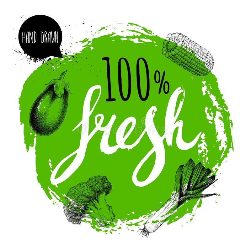 Πράσινος τραχύς κύκλος με χρωματισμένες τις χέρι επιστολές Λαχανικά ύφους σκίτσων χάραξης Μελιτζάνα, κομμάτι καλαμποκιού, πράσο κ διανυσματική απεικόνιση