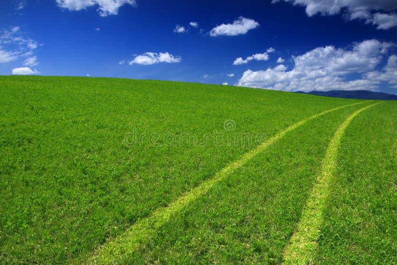 πράσινος τρόπος πεδίων στοκ φωτογραφία με δικαίωμα ελεύθερης χρήσης