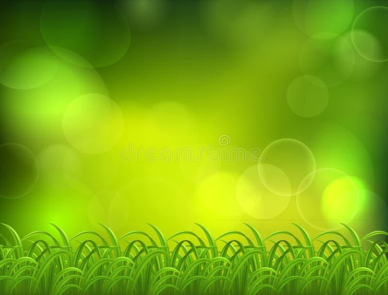 πράσινος φυσικός εκλεκτικός εστίασης ανασκόπησης απεικόνιση αποθεμάτων