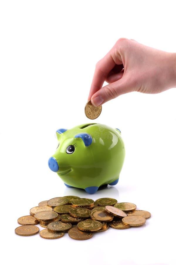 πράσινος χοίρος χρημάτων κιβωτίων στοκ φωτογραφία