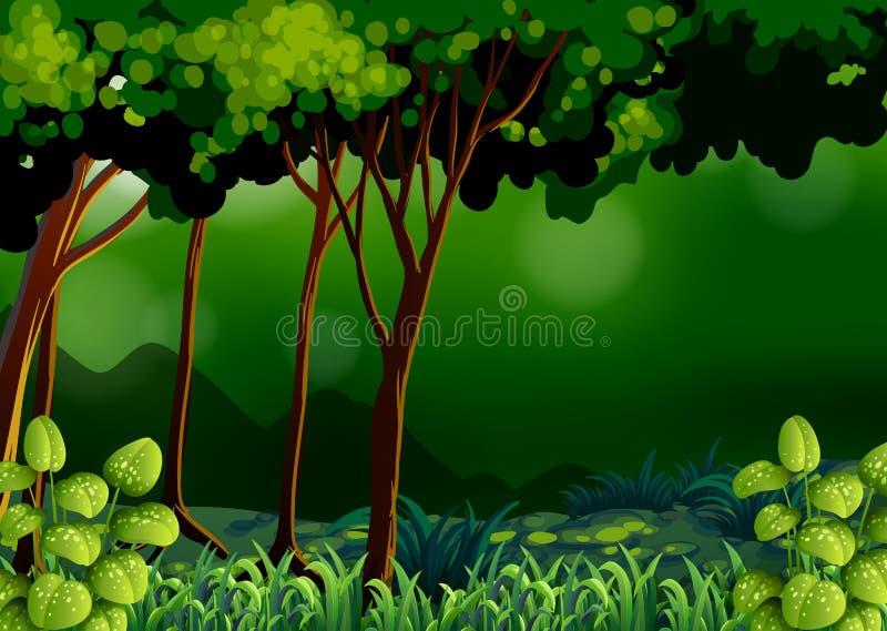 Πράσινο δάσος απεικόνιση αποθεμάτων