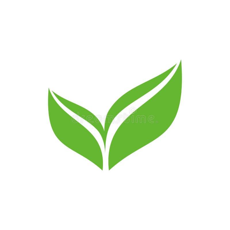 Πράσινο απομονωμένο φύλλο διανυσματικό σύμβολο απεικόνιση αποθεμάτων