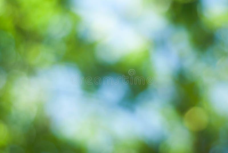 Πράσινο αφηρημένο φυσικό υπόβαθρο Defocused από θερινό πάρκο Brunch Bokeh ουρανού TreesBlue εστίασης το πράσινο στοκ φωτογραφία