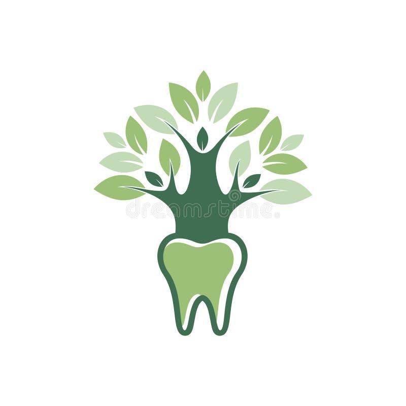 Πράσινο βοτανικό σύμβολο λογότυπων ιατρικής οδοντικής υγείας ελεύθερη απεικόνιση δικαιώματος