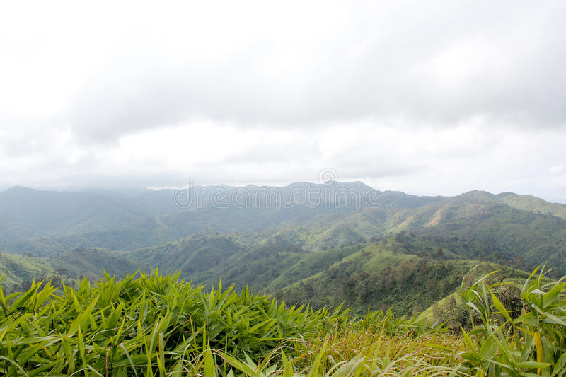 Πράσινο βουνό στοκ εικόνες