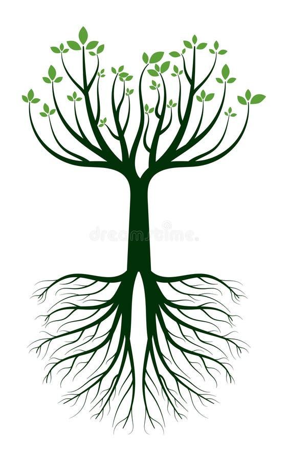 Πράσινο δέντρο στο εικονίδιο λογότυπων ρίζας στοκ φωτογραφία