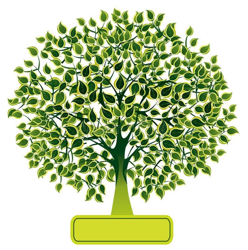 πράσινο δέντρο ελεύθερη απεικόνιση δικαιώματος