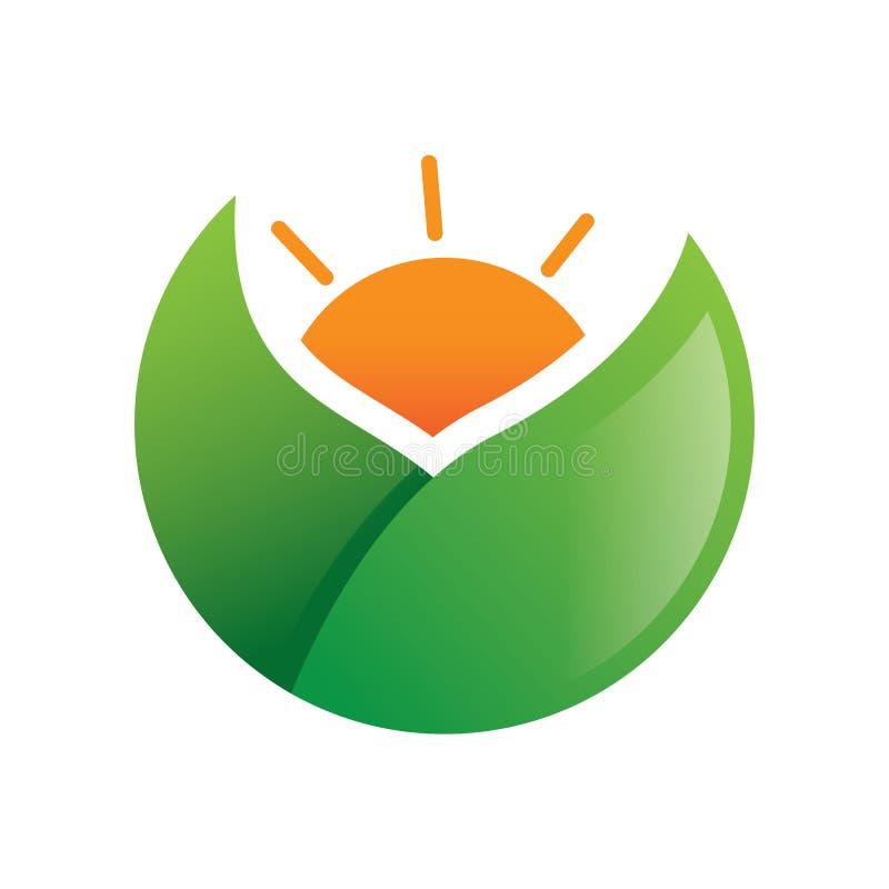 Πράσινο διάνυσμα λογότυπων ήλιων φύλλων απεικόνιση αποθεμάτων