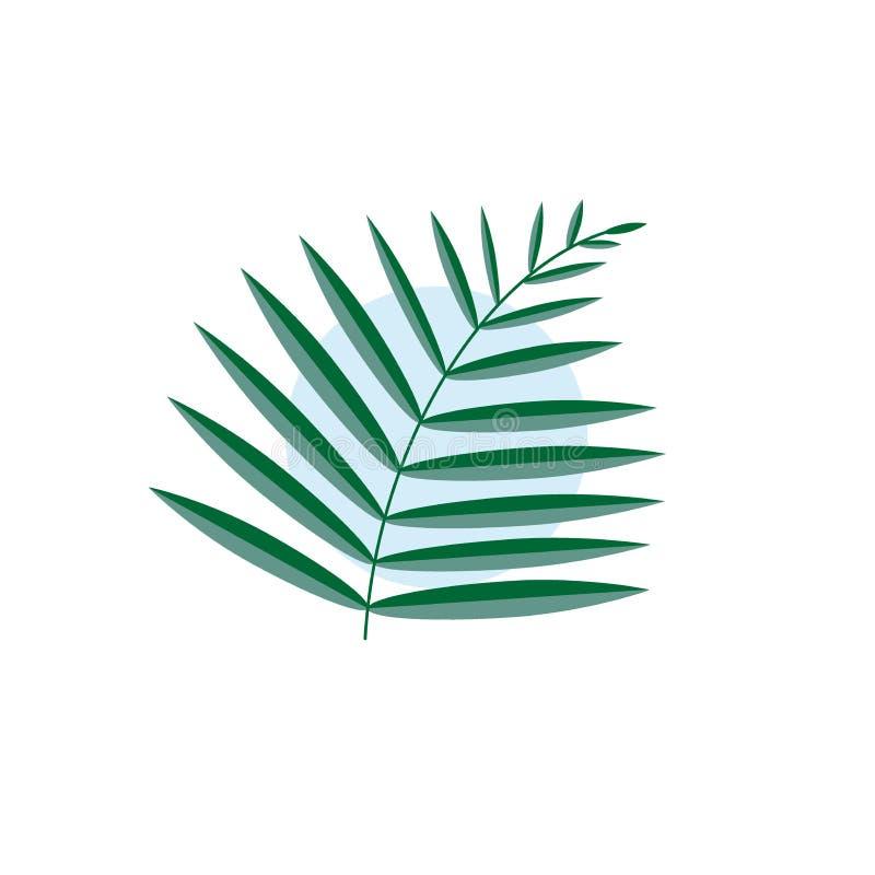 Πράσινο διανυσματικό φύλλο ενός φοίνικα που απομονώνεται με έναν μπλε κύκλο σε ένα άσπρο υπόβαθρο ελεύθερη απεικόνιση δικαιώματος