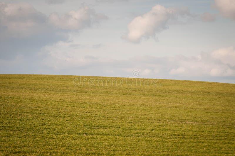 Πράσινο λιβάδι με τον ουρανό στοκ εικόνες