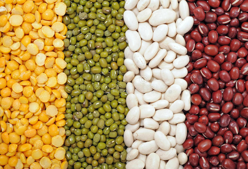 Πράσινο, κίτρινο, άσπρο και κόκκινο φασόλι στοκ εικόνες με δικαίωμα ελεύθερης χρήσης
