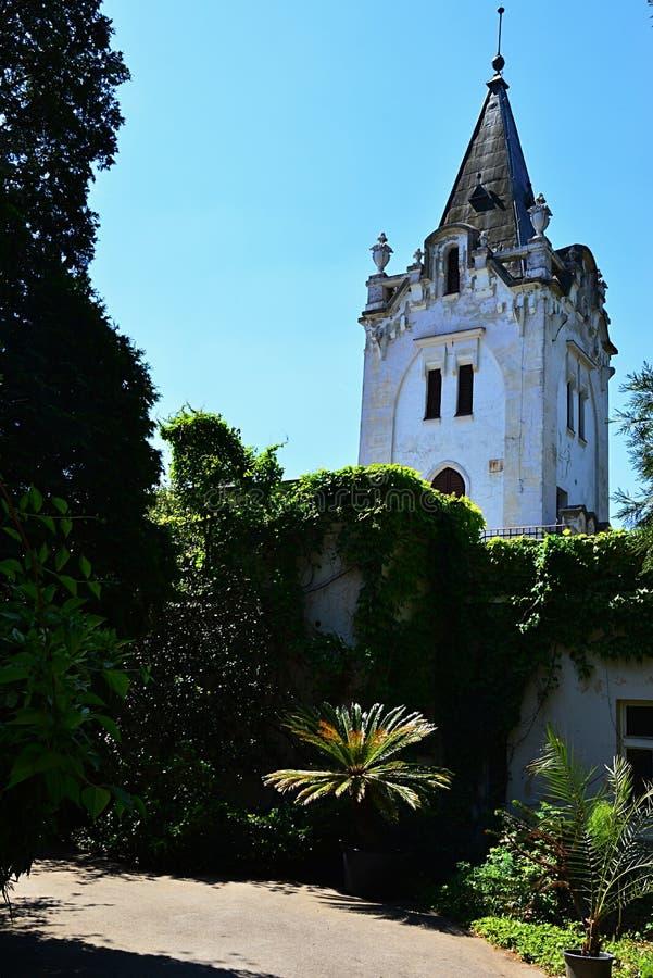 Πράσινο κατώφλι του παλαιού μεγάρου στο δενδρολογικό κήπο Mlynany, Σλοβακία, κατά τη διάρκεια της ηλιόλουστης εποχής άνοιξης, κύρ στοκ φωτογραφία