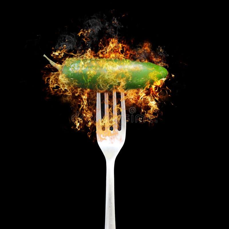 πράσινο καυτό πιπέρι jalapeno πυρκ&a στοκ εικόνα