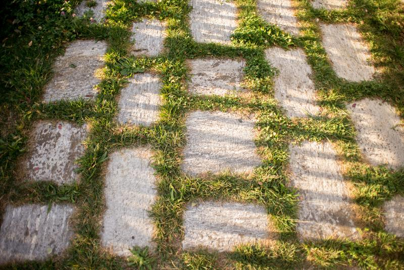 Πράσινο κεραμίδι οδών γρανίτη Beetween χλόης στο ηλιοβασίλεμα στοκ εικόνες