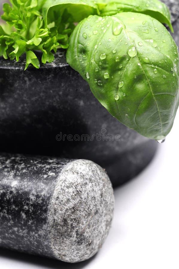 πράσινο κονίαμα χορταριών στοκ εικόνα