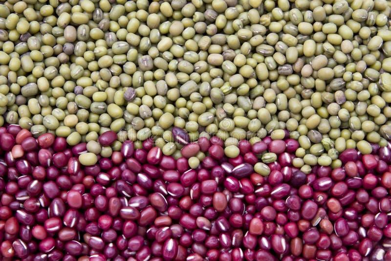 πράσινο κόκκινο φασολιών στοκ εικόνες με δικαίωμα ελεύθερης χρήσης
