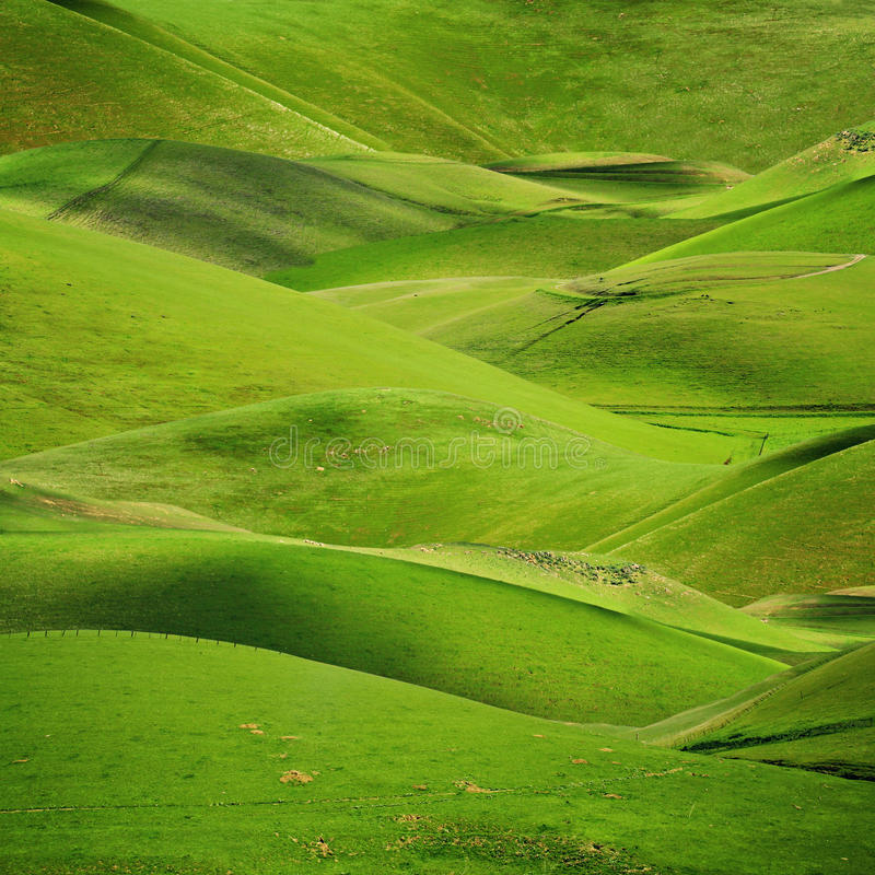 πράσινο κύλισμα λόφων ανασ& στοκ εικόνα με δικαίωμα ελεύθερης χρήσης