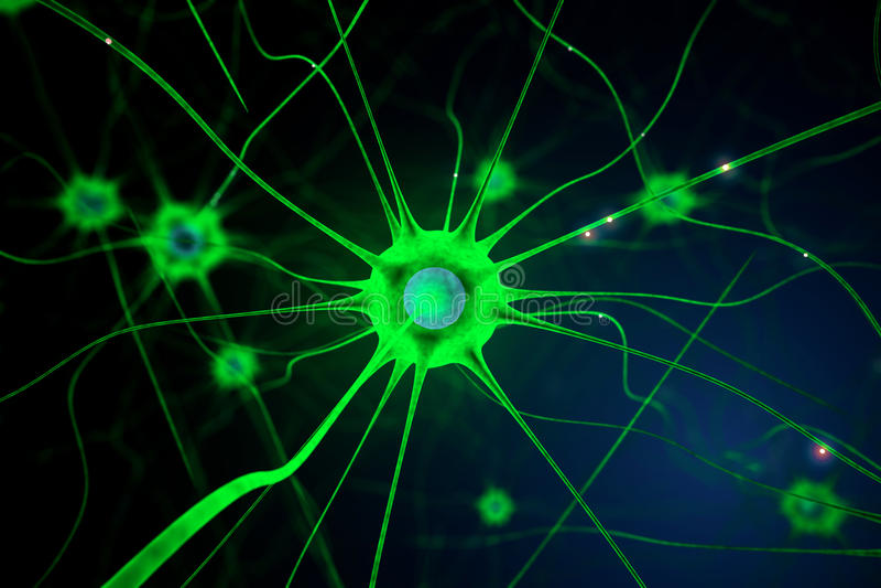 Πράσινο κύτταρο νεύρων απεικόνιση αποθεμάτων