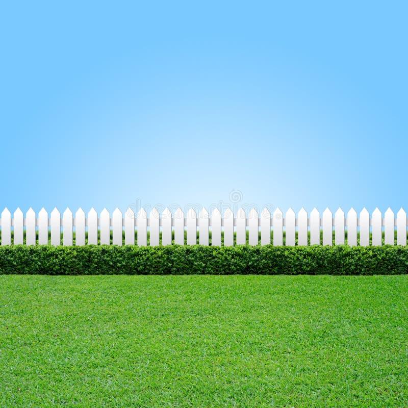 πράσινο λευκό χλόης φραγών στοκ εικόνα