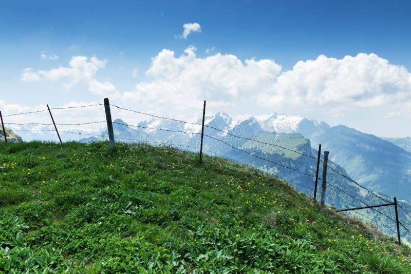 Πράσινο λιβάδι βουνών μπροστά από οδοντωτό - φράκτης καλωδίων και άποψη στοκ φωτογραφία με δικαίωμα ελεύθερης χρήσης