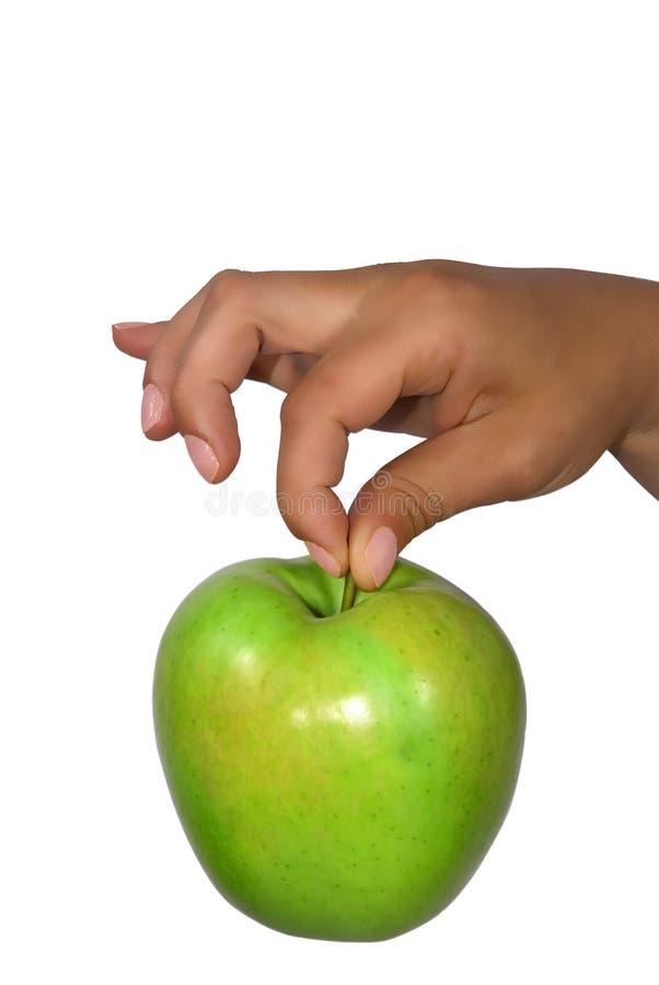 πράσινο μήλου λευκό εκμετάλλευσης στοκ εικόνες με δικαίωμα ελεύθερης χρήσης